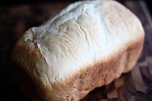Favorite Bread Machine Sourdough Loaf
