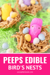 easter edible bird's nests with peeps