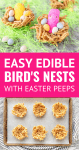 Edible Bird's Nests with peeps and candy eggs