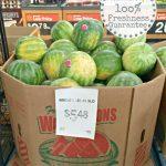 Watermelon Salsa | A Fresh Take On An Old Favorite
