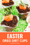easter oreo dirt cups with carrot chocolate-covered strawberries