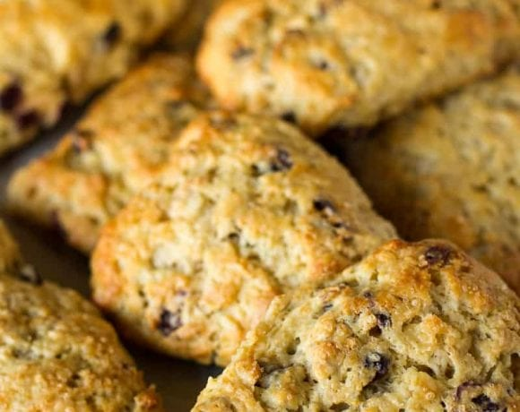 Cranberry Walnut Scones   Freeze & Bake Scones Recipe