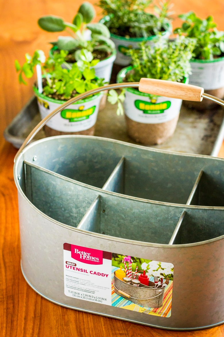 indoor herb garden container and plants