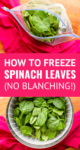 how to freeze spinach in a ziploc plastic bag the easy way
