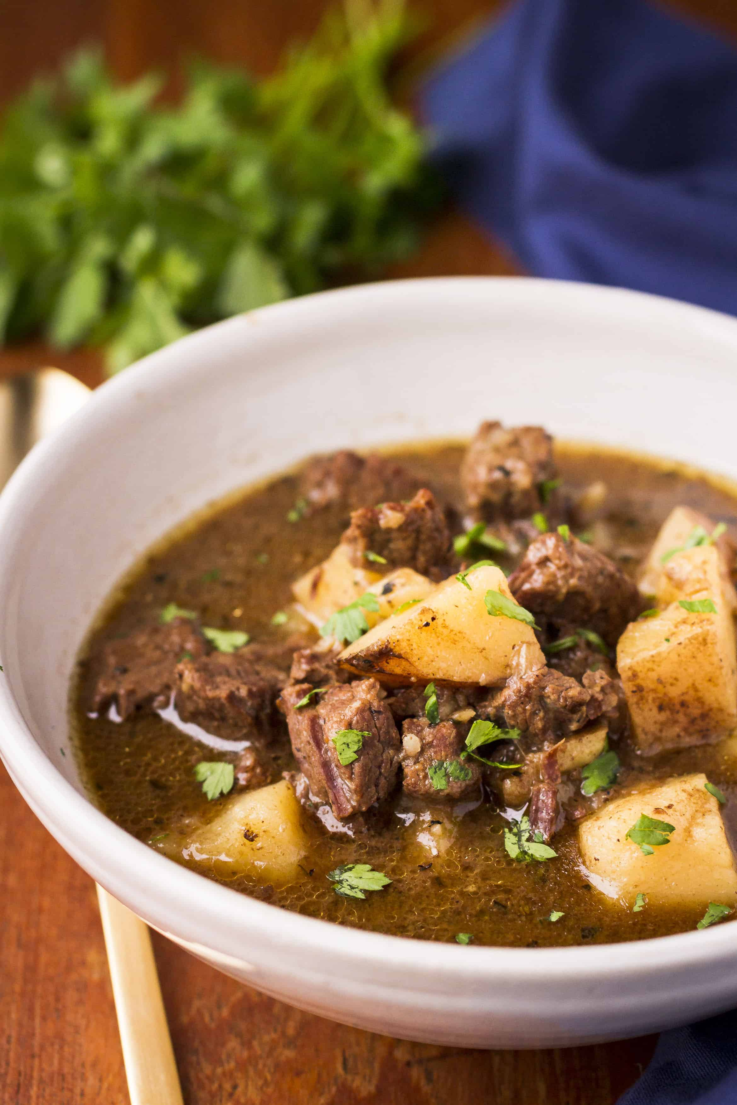 Instant Pot Meat and Potatoes Beef Stew
