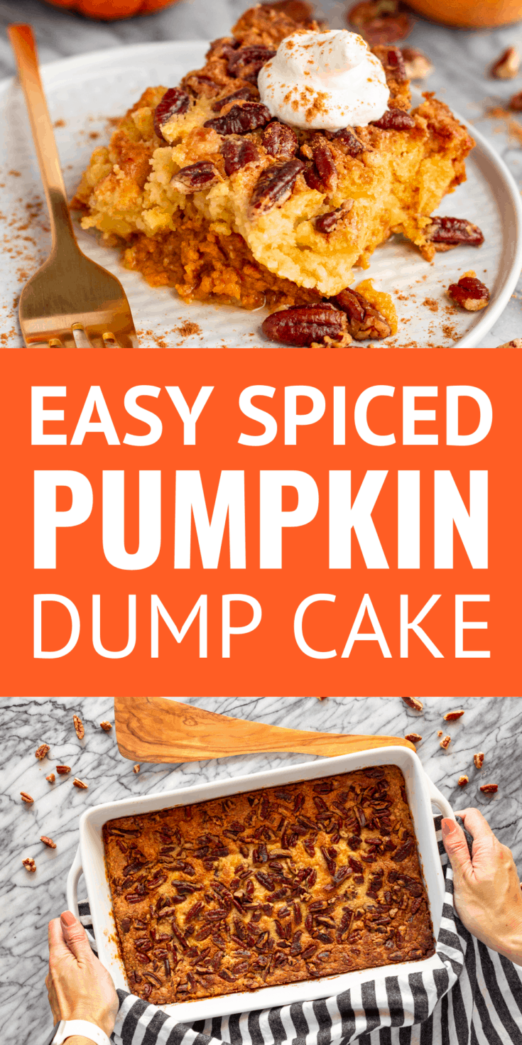 Easy Spiced Pumpkin Dump Cake With Pecans -- This easy pumpkin dump cake recipe, with its layers of pumpkin pie filling, a tender vanilla middle, and crunchy buttery pecan topping, is sure to become a family favorite fall dessert! You may even decide to skip the pumpkin pie and make this simple recipe instead this holiday season. | dump cake recipes | dump cake recipes pumpkin #pumpkin #pumpkinspice #pumpkinrecipes #pumpkincake #pumpkindumpcake #cakemix #dumpcake #easyrecipe #dessertrecipes