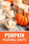 pumpkin pudding shots