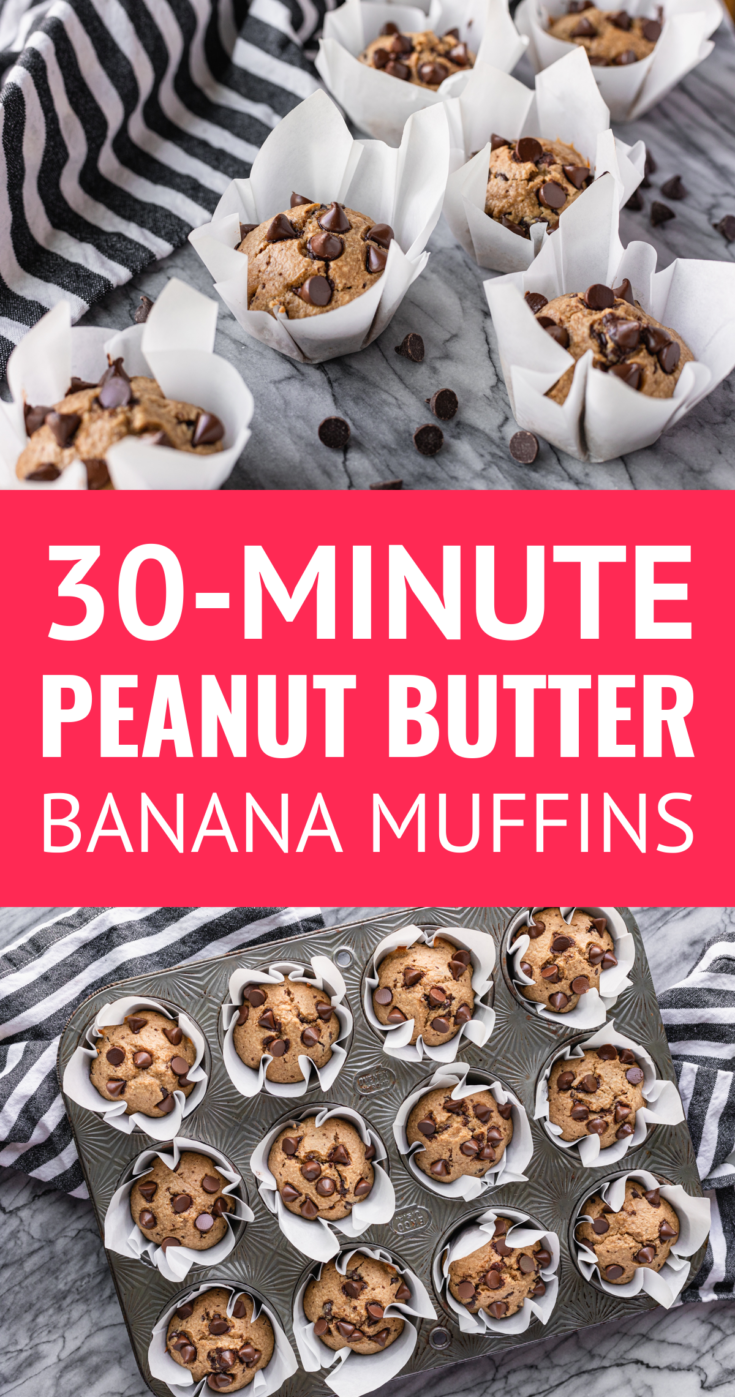 "Peanut Butter Banana Muffins"" data-pin-description=""30-Minute Blender Peanut Butter Banana Muffins -- healthy (but delish) peanut butter banana muffins are soon to be on repeat in your home... With minimal prep, the simple ingredients go from your blender, to a muffin tin, into your oven, and to your mouth in just about 30 minutes! 